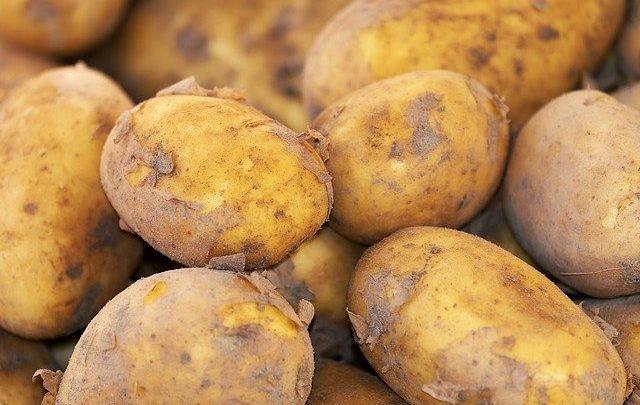 manfaat kentang bagi kesehatan